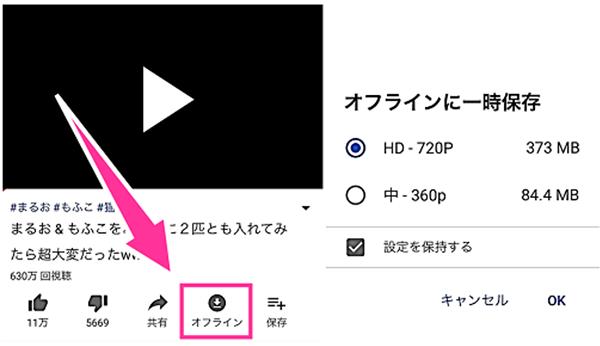 YouTubeオフライン